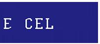 Excel Gymnastics Academy Logo